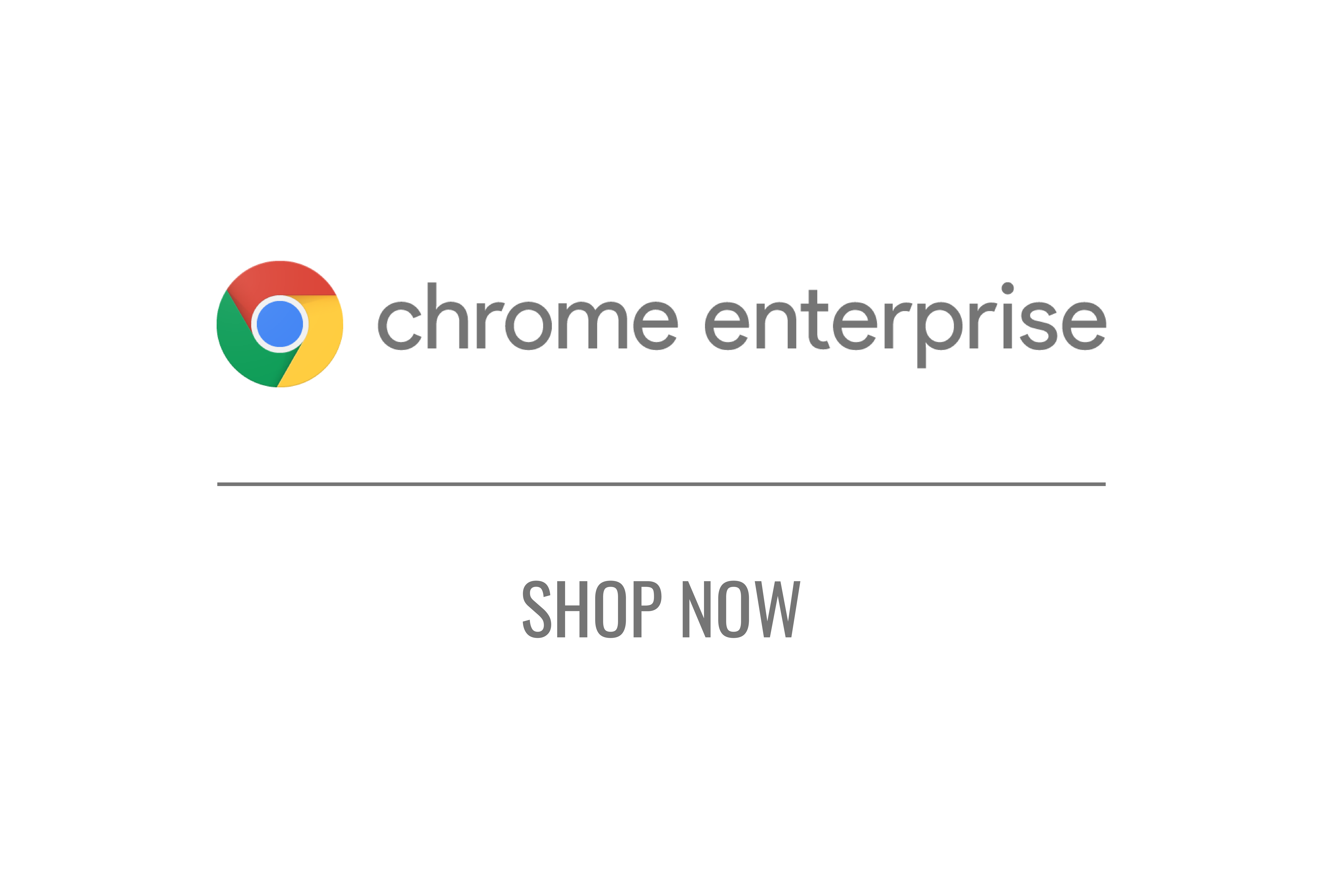 Chrome Enterprise Licenses